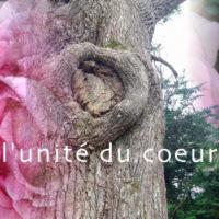 l-unite-du-coeur-1