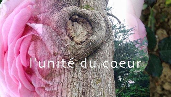 Unité du coeur